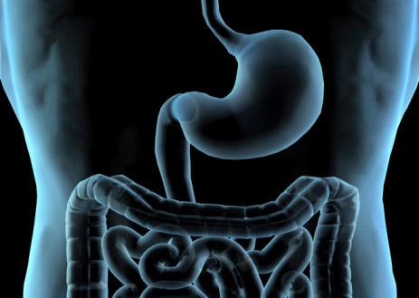 腸胃炎 (急性與慢性)